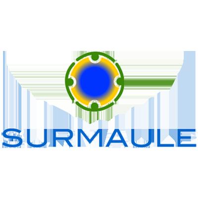 ONG Sur Maule